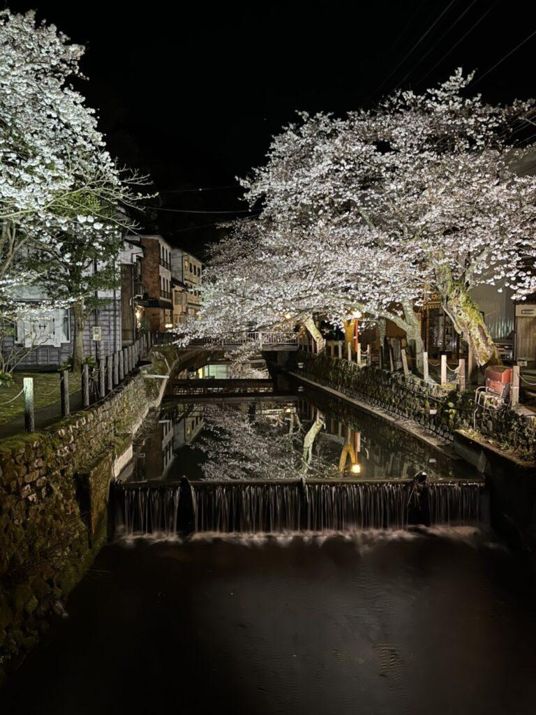 川面に移った夜桜・・・
