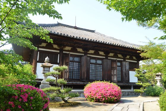 大阪 貝塚市 堺市 緊急事態宣言 ぶらり旅 まちぶら 考恩寺 国宝 観音堂